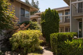 17315 NE 45th St  142, Redmond, WA 98052 (#667354) :: Exclusive Home Realty