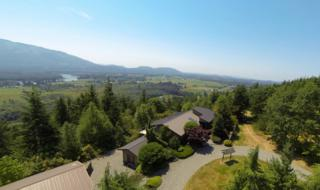 29000  Outlook Lane  , Sedro Woolley, WA 98284 (#667912) :: Home4investment Real Estate Team