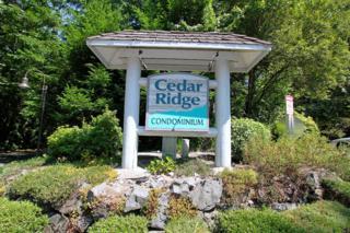 8124  146th Ct NE B, Redmond, WA 98052 (#668866) :: Exclusive Home Realty