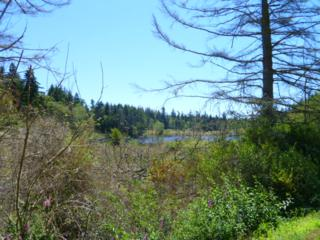 0  Devries St  , Oak Harbor, WA 98277 (#671447) :: Commencement Bay Brokers