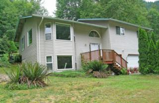 747  Cain Lake Rd  , Sedro Woolley, WA 98284 (#671612) :: Home4investment Real Estate Team