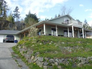 306  Longtime Lane  , Sedro Woolley, WA 98284 (#672321) :: Home4investment Real Estate Team