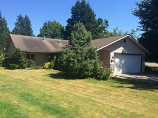 6929  Steelhead Lane  , Burlington, WA 98233 (#675111) :: Home4investment Real Estate Team