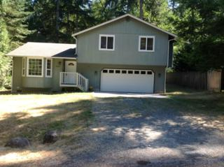 8803  Salal Dr  , Anderson Island, WA 98303 (#675507) :: Home4investment Real Estate Team