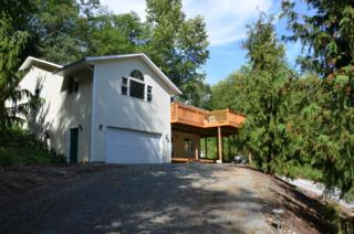 19773  Prairie Rd  , Sedro Woolley, WA 98284 (#680788) :: Home4investment Real Estate Team