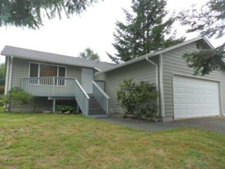 378  Lakeside Dr  , Sedro Woolley, WA 98284 (#681300) :: Home4investment Real Estate Team