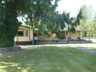 7344  State Route 9  , Sedro Woolley, WA 98284 (#681463) :: Home4investment Real Estate Team