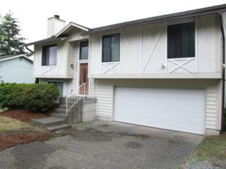 2423  124th Place NE , Bellevue, WA 98005 (#682277) :: Exclusive Home Realty