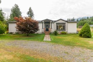 4388  Prairie Lane  , Sedro Woolley, WA 98284 (#683199) :: Home4investment Real Estate Team