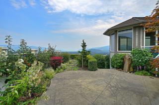 826  Bella Vista Lane  , Burlington, WA 98233 (#683909) :: Home4investment Real Estate Team