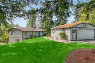 31805 NE 123rd St  , Duvall, WA 98019 (#684559) :: Exclusive Home Realty