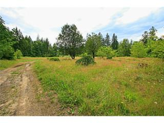 46455  Baker Loop Rd  , Concrete, WA 98237 (#685149) :: Home4investment Real Estate Team