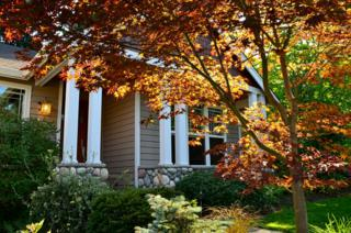 10007 NE 29th Place  , Bellevue, WA 98004 (#686025) :: Home4investment Real Estate Team