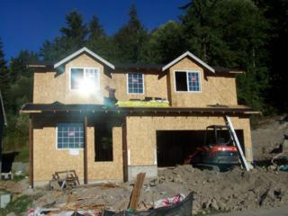 229  Skylar  , Eatonville, WA 98328 (#686395) :: Keller Williams Realty