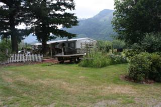 30720 S Skagit Hwy  , Sedro Woolley, WA 98284 (#686692) :: Home4investment Real Estate Team