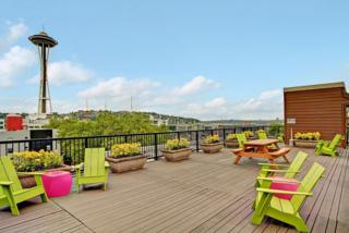 425  Vine St  321, Seattle, WA 98121 (#687306) :: Exclusive Home Realty