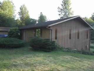 151  Thomas Rd  , Bellingham, WA 98226 (#688630) :: Home4investment Real Estate Team