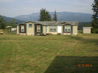 19943  Double Creek Lane  , Sedro Woolley, WA 98284 (#688726) :: Home4investment Real Estate Team