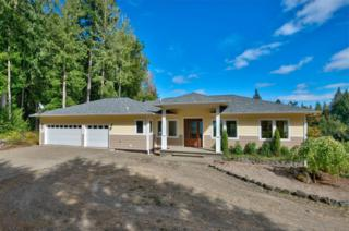 16517  34th St Ct KP , Lakebay, WA 98349 (#689064) :: Priority One Realty Inc.