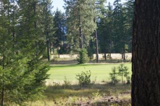 2011  Coal Mine Wy  , Cle Elum, WA 98922 (#689729) :: Home4investment Real Estate Team