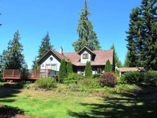 492  Gellor Rd  , Port Angeles, WA 98362 (#689732) :: Home4investment Real Estate Team