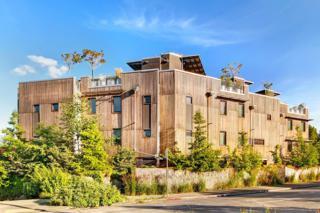 3657  Whitman Ave N , Seattle, WA 98103 (#689796) :: Nick McLean Real Estate Group