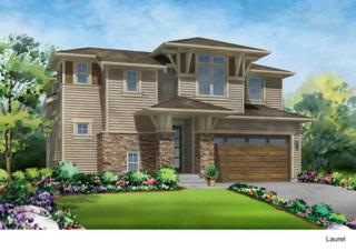 4678  234th Place SE Lot15, Sammamish, WA 98075 (#691899) :: Exclusive Home Realty