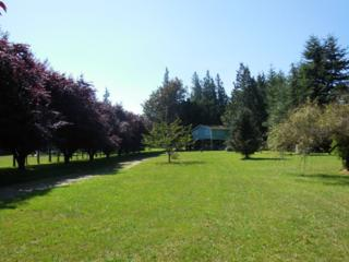 32798  Cockerham Lane  , Sedro Woolley, WA 98274 (#693156) :: Home4investment Real Estate Team