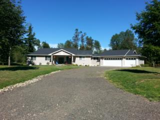 1327  196th Ave KP , Lakebay, WA 98349 (#693325) :: Priority One Realty Inc.