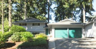 9207  120th Ave SE , Newcastle, WA 98056 (#693668) :: Exclusive Home Realty