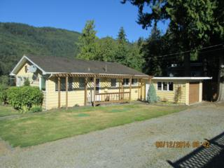 185  Cain Lake Rd  , Sedro Woolley, WA 98284 (#694241) :: Home4investment Real Estate Team