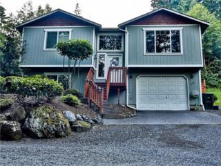 737  Summerset Wy  , Sedro Woolley, WA 98284 (#694544) :: Home4investment Real Estate Team