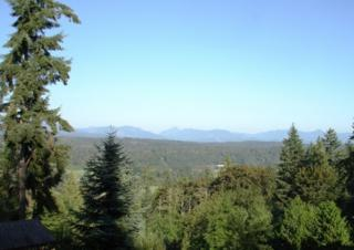 13523 W Snoqualmie Valley Rd NE , Duvall, WA 98019 (#694567) :: Exclusive Home Realty