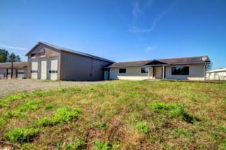5493  Guide Meridian  , Bellingham, WA 98226 (#694991) :: Exclusive Home Realty