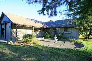 5513  Salish Rd  , Birch Bay, WA 98230 (#695034) :: Home4investment Real Estate Team