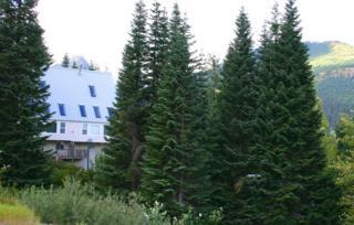 230  Kearny Dr  , Snoqualmie Pass, WA 98068 (#695462) :: FreeWashingtonSearch.com