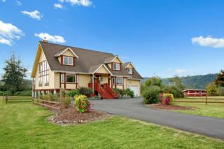 2805  Fall City Carnation Rd NE , Carnation, WA 98014 (#695746) :: Nick McLean Real Estate Group