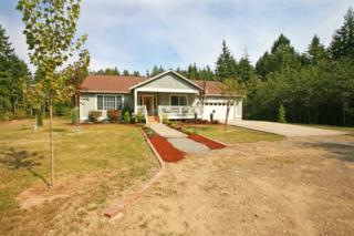 6229  Beal Place NW , Seabeck, WA 98380 (#697147) :: Mike & Sandi Nelson Real Estate