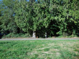 0  Oooooooooo  , Bremerton, WA 98312 (#697985) :: Home4investment Real Estate Team