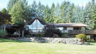 2104  Graf Rd  , Centralia, WA 98531 (#707931) :: Home4investment Real Estate Team