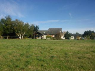 4835  163rd Lane SW , Rochester, WA 98579 (#709489) :: Commencement Bay Brokers