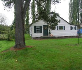 1513 NE Echo Dr  , Bremerton, WA 98311 (#709957) :: Better Homes and Gardens McKenzie Group