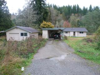 10417  241ST Ave SE , Monroe, WA 98272 (#710324) :: Home4investment Real Estate Team