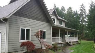 355 E Snowy Owl Dr  , Shelton, WA 98584 (#712087) :: The Kendra Todd Group at Keller Williams