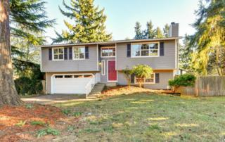 3933 SW 332nd Place  , Federal Way, WA 98023 (#717237) :: Exclusive Home Realty