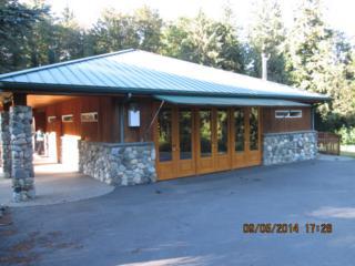 8229  Skinner Rd  C-8, Granite Falls, WA 98252 (#717622) :: Commencement Bay Brokers