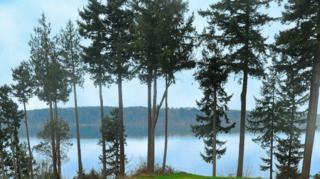 6222  98th St NW , Marysville, WA 98271 (#718004) :: Keller Williams Realty Greater Seattle
