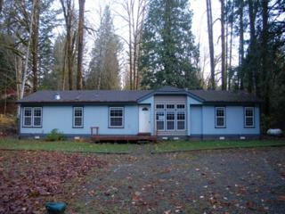 6113  Mt Baker Hwy  , Deming, WA 98244 (#718049) :: Home4investment Real Estate Team