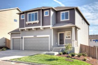8018  155th St Ct E 3154, Puyallup, WA 98375 (#719527) :: Home4investment Real Estate Team