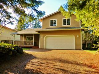 17837  Clear Lake Blvd SE , Yelm, WA 98597 (#719539) :: Home4investment Real Estate Team